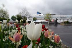 White Tulip of Alesund Norway with Cruise Ship in the Background.jpg
