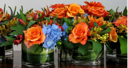 Trendy Short centerpieces in bright colors.PNG