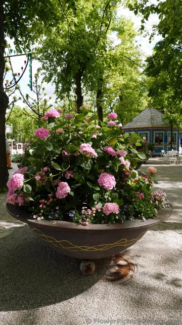 Giant Hydrangea Bowl-Shaped Planter at Tivoli Gardens in Copenhagen.jpg