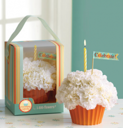 Cupcake flowers gift for birthday.PNG