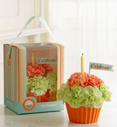 Green and orange cupcake birthday gift flowers pictures.PNG