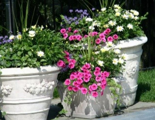Big Pots Indoor Plants: Three White Beautiful Garden Planters.JPG