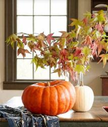 Simple yet pretty Halloween pumpkin decor ideas photos.JPG