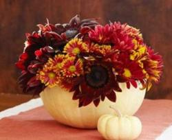 White pumpkin centerpiece with fresh red flowers photo.JPG