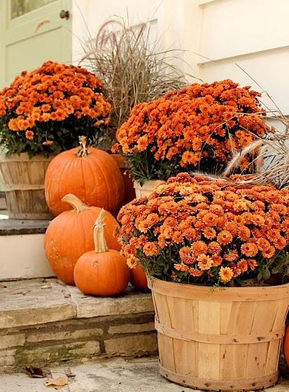 Orange flowers and pumpkins front door decoration.JPG