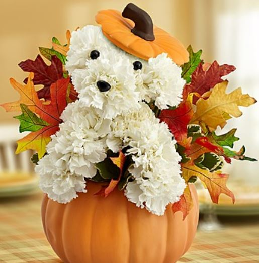 Pumpkin centerpiece with Fall leaves and white flowers dog shaped.JPG