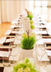 Cheap wedding centerpieces with grass in small planters.JPG