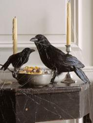 Unique halloween decoration with crows.JPG