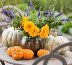 2015 fresh pumpkin arrangement ideas picture.JPG