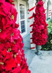 Christmas front door Christmas decor ideas with beautiful poinsettia flowers in red.JPG