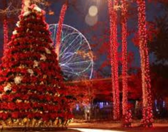 New Holiday in the Park Festival Dazzles at Six Flags Great Adventure.JPG