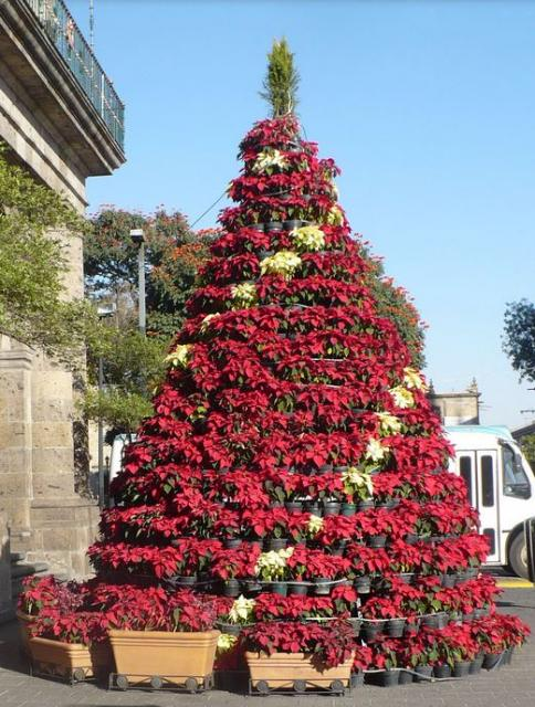 Flowers Christmas tree with white and red poinsettias.JPG