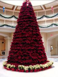 Large dark red poinsettias Christmas tree with white poinsettias.JPG