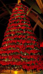 Large red flowers Christmas tree with poinsettias.JPG