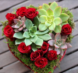 Natural valentines day flowers arrangement with roses and catus