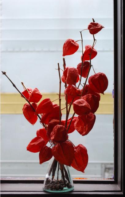 Chinese lantern flowers centerpiece