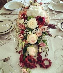 Beautiful white and purple red flowers with wide centerpiece