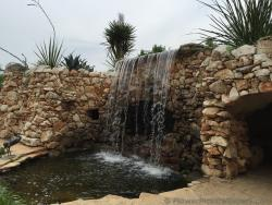 Mini Waterfall at Austin Wild Flower Center.jpg