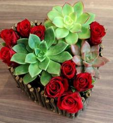 Heart shaped Valentine's Day Flower gift with Succulent Plants and Red Roses