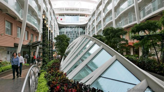 Spine-like Sky Light Windows at Central Park Allure of the Seas
