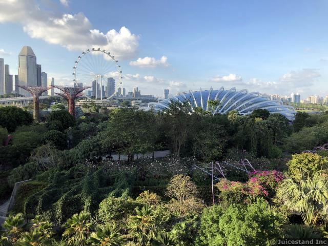 Another View of Singapore Skyline from OCBC Skywalk