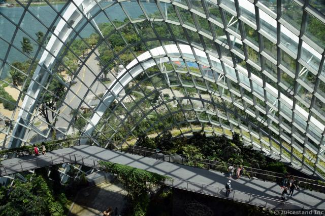 Cloud Forest Dome Gardens by the Bay