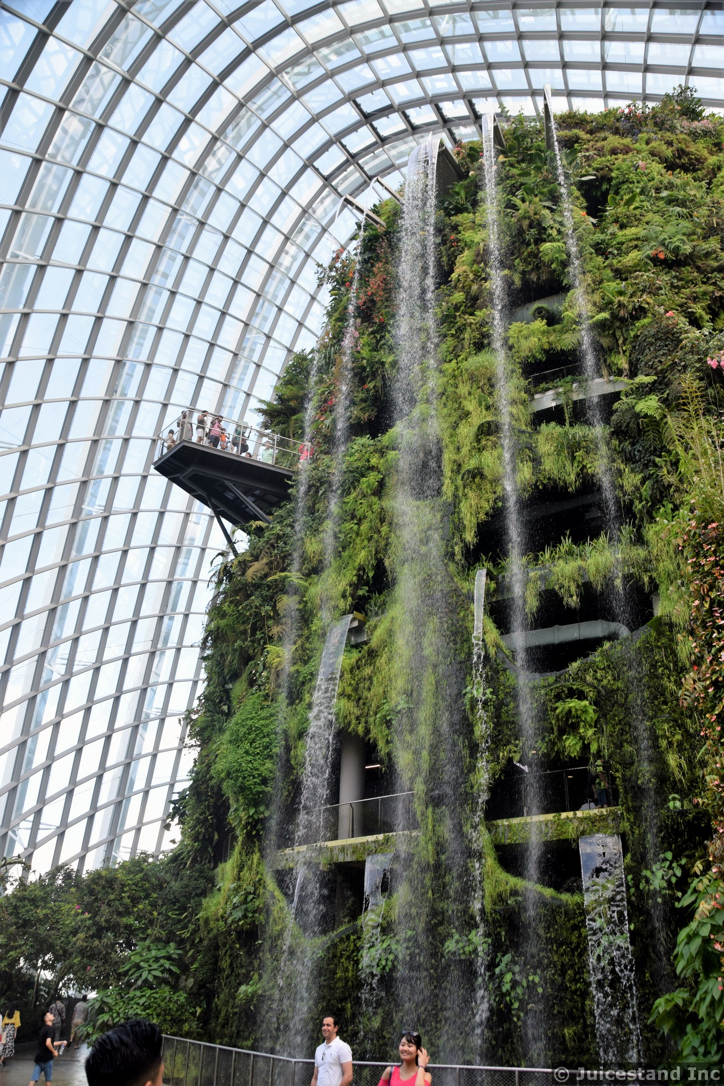 Cloud Forest Waterfall Gardens by the Bay