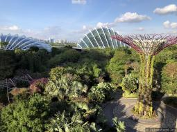 Flower Dome & Cloud Forest Dome seen from OCBC Skyway
