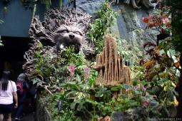 Lion Head Sculpture and Tropical Flowers of Secret Garden Cloud Forest
