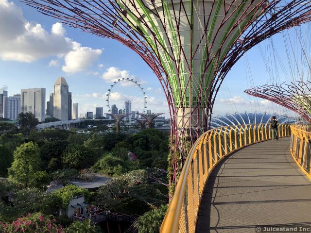 OCBC Skyway Beautiful View of Singapore