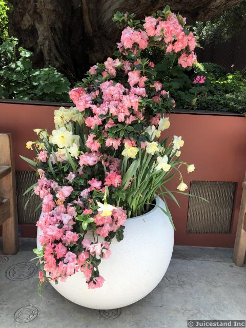 Pink and White Floral Arrangement in Large Eggshell Vase
