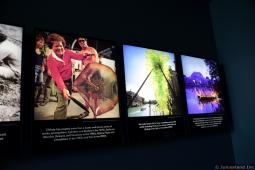 Chihuly Garden and Glass History 2
