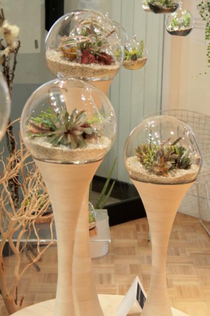 Cool And Modern Planters By Golly Pods From Tend Png