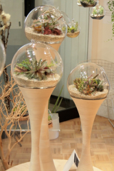 Cool and modern planters by Golly Pods from Tend.PNG