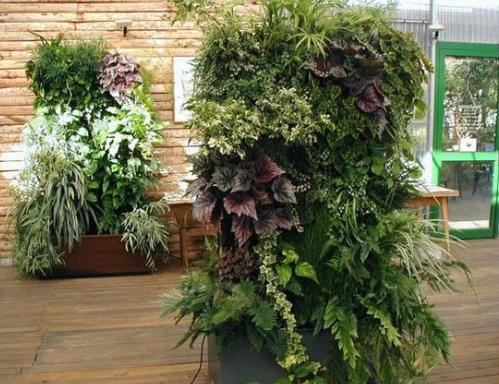 Patio Garden Planter Pots Idea.PNG