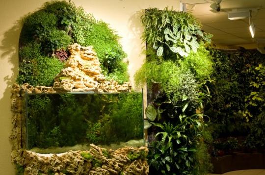 Indoor vertical garden decorPNG