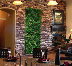 Plants wall decorations.PNG