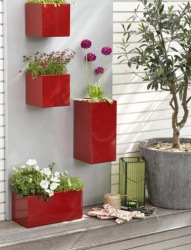 Cool Red Wall-Attached Planters Rectangular.PNG
