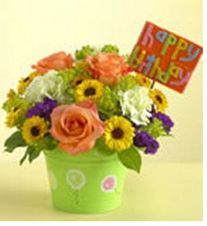 Colorful fresh flowers birthday gift pictures
