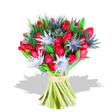 tulips bouquet photo.jpg