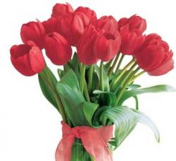 red tulips in modern glass vase picture.jpg