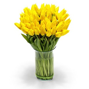 golden yellow Tulips flower arrangement picture.jpg