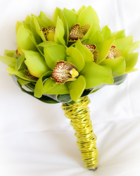Green cymbidium orchid wedding.PNG