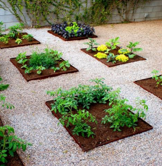 Potager garden ideas pictures.PNG