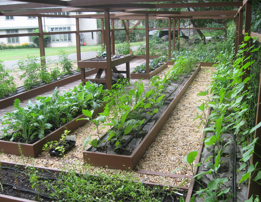 Vegetable garden design ideas pictures.PNG