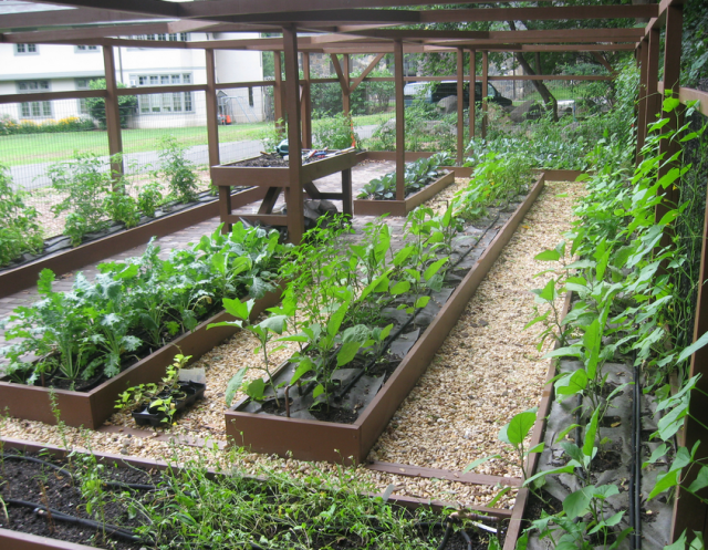 Vegetable Garden Design Ideas PicturesPNG