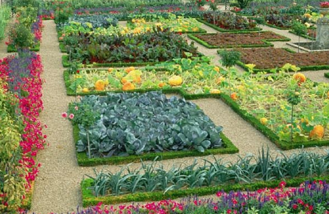 Beautiful garden with full of beautiful flowers and for Beautiful vegetable garden designs