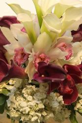 orchid Bride bouquet picture.jpg