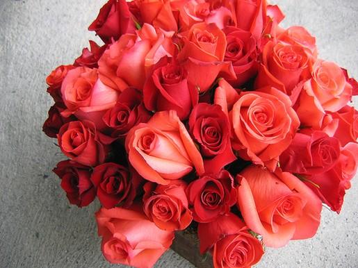 Bright Orange Red Roses Wedding