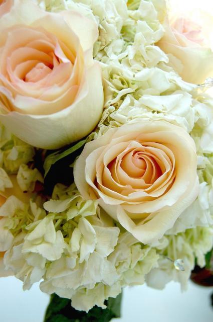 Peach Roses Hydrangea Wedding Bouquet Jpg Hi Res 720p Hd